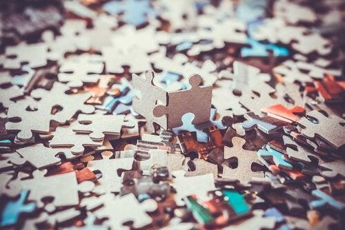 Veel puzzelstukjes