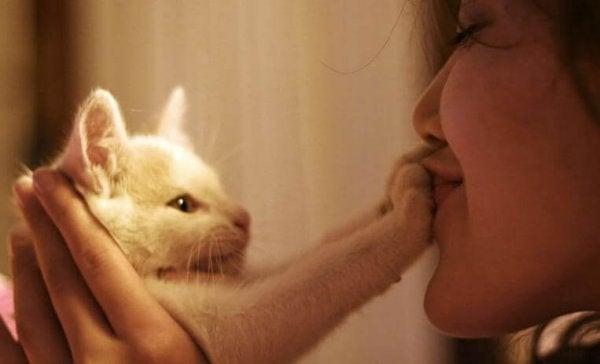Rouwen om een huisdier