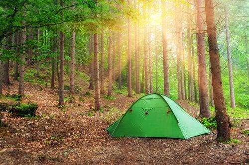 Een tentje in het bos, als verwijzing naar het Robber's cave experiment
