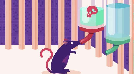 Rat drinkt gif tijdens experiment