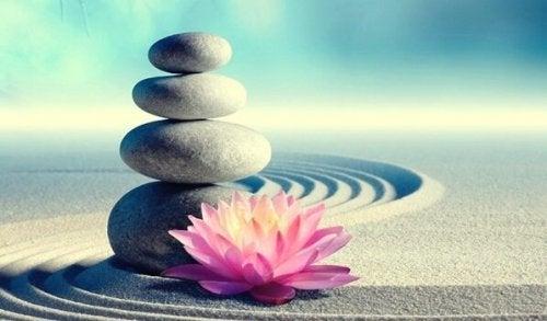De 7 geboden van Zen die je leven zullen veranderen