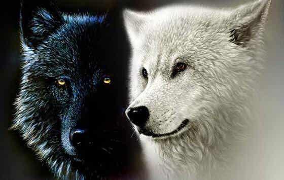 De Cherokee legende over de twee wolven