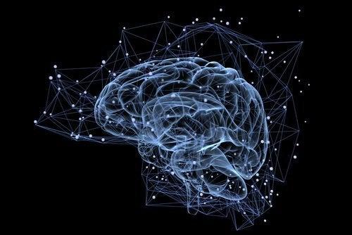 Verlicht brein
