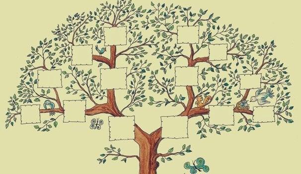 Stambomen tekenen