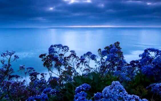 De stressverlichtende kleur: blauw