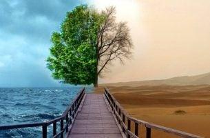 Depressie behandelen met Gestalttherapie