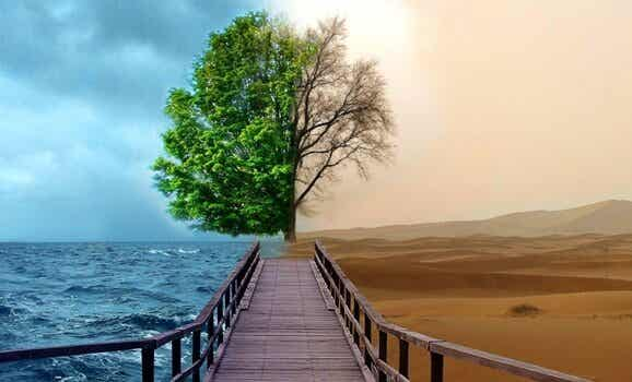 Depressie behandelen met gestalttherapie: 4 kernpunten