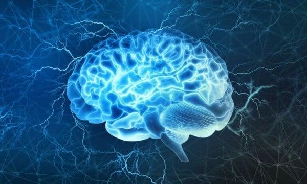 De studie van een hersentsunami