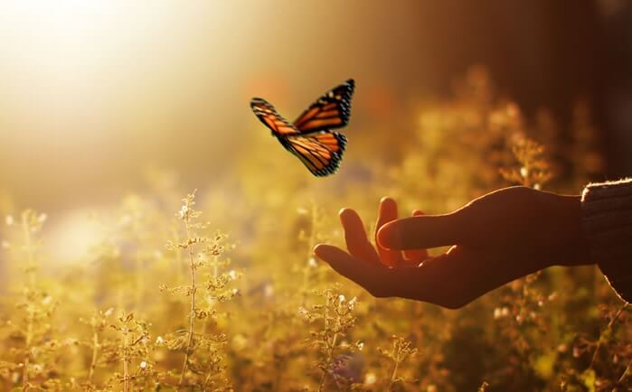 Vrouw die een vlinder vrijlaat, als verwijzing naar Fritz Perls