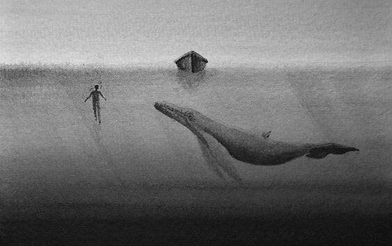 Walvis die ongevoelig is voor het leed van de mens