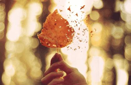 5 sleutels voor het uiten van emotionele pijn