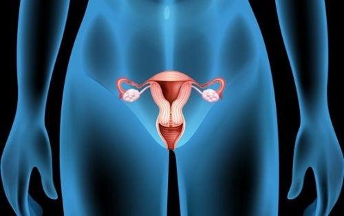 Eierstokcysten: symptomen, oorzaken en behandeling