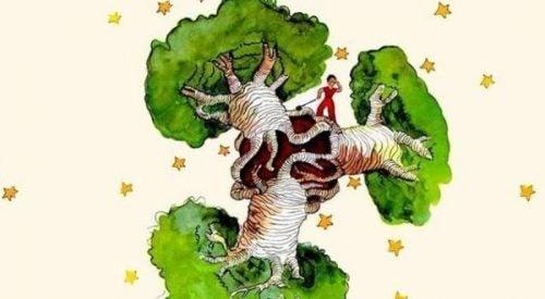 """Een baobab in het hart - een reflectie op """"De kleine prins"""""""