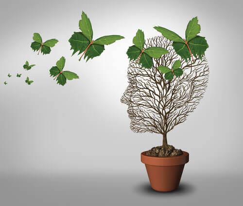 Klein boompje in de vorm van een gezicht, want persoonlijke groei is een van de kenmerken van emotionele volwassenheid