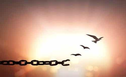7 prachtige citaten over vergeving