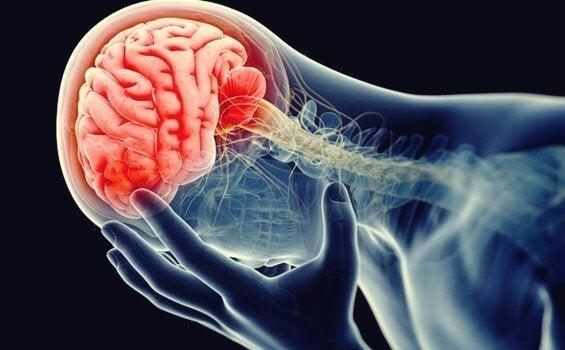 De werking van de hersenen bij dysthymie