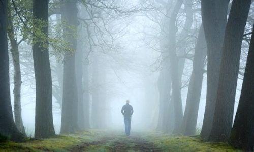 Welke plaats heeft de bostest in de psychoanalyse?