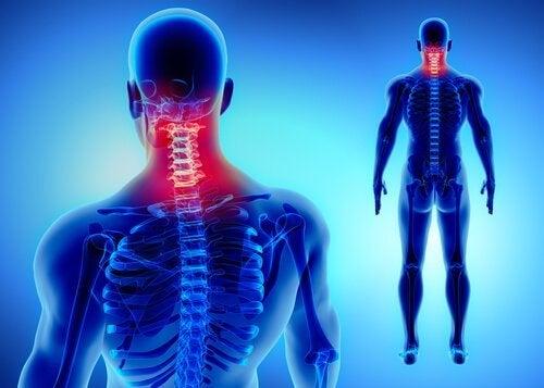 Goed voor je nek zorgen om nekpijn te voorkomen