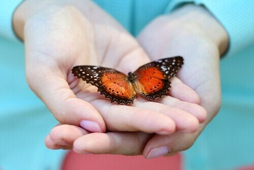 Vlinder is een van de betekenissen van het psychologiesymbool