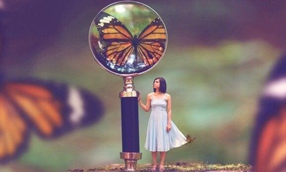 Vlinder door een vergrootglas