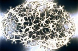 De witte stof in ons zenuwstelsel