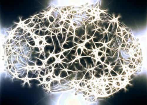 Waarom is de witte stof in ons zenuwstelsel zo belangrijk?