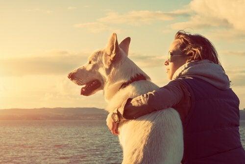 De speciale band tussen mensen en hun huisdier