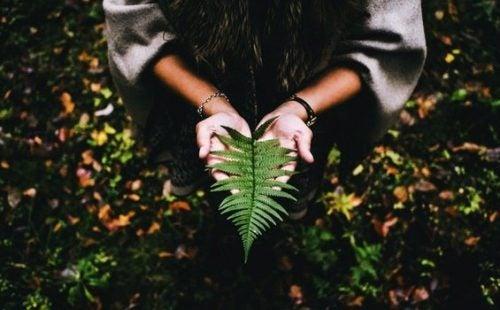 Het vergt vrede en geduld om de zin van het leven te vinden