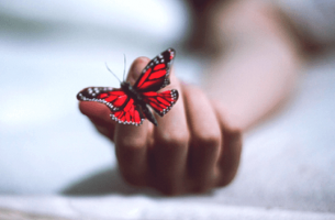 7 boeken die helpen om een depressie te overwinnen