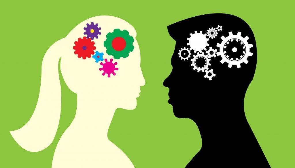 De verschillen tussen het mannelijke en vrouwelijke brein