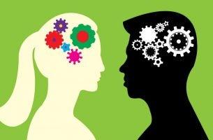 verschillen tussen het mannelijke en vrouwelijke brein