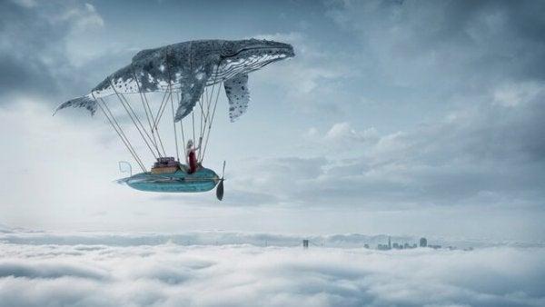Verhalen die je helpen fantaseren en dromen