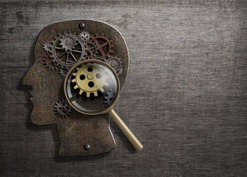 8 psychologische basisprocessen