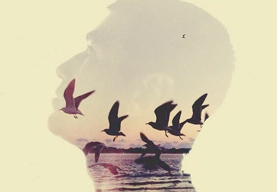 Man met vogels op de achtergrond