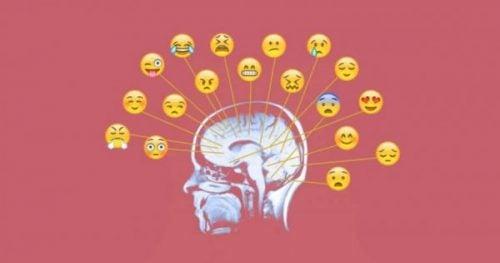 Verschillende niveaus van emotioneel bewustzijn
