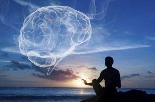 Ontdek wellness: integrale gezondheid en balans tussen lichaam en geest