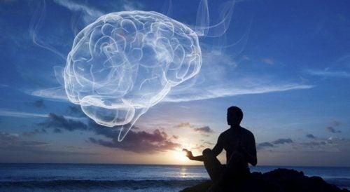 Wellness: integrale gezondheid en balans tussen lichaam en geest