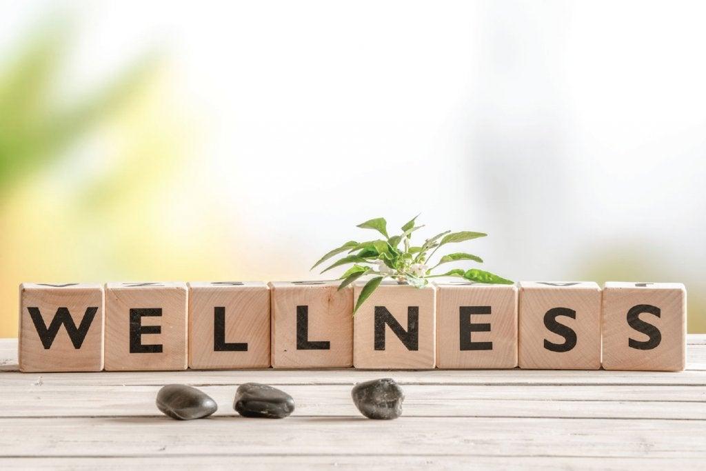 Blokken met daarop het woord wellness