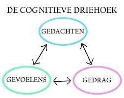 De cognitieve driehoek