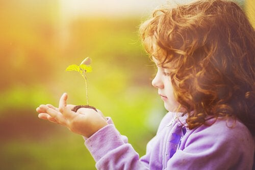 Groeiende plant in de hand van een kind