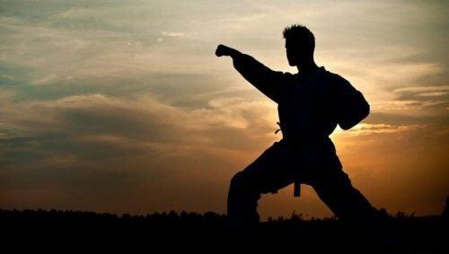 Man die martial arts beoefent