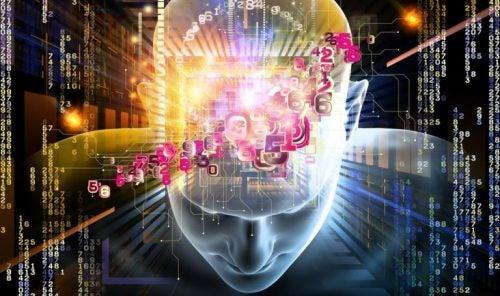 Mechanisme van de hersenen