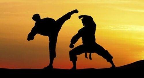 Martial arts in de praktijk
