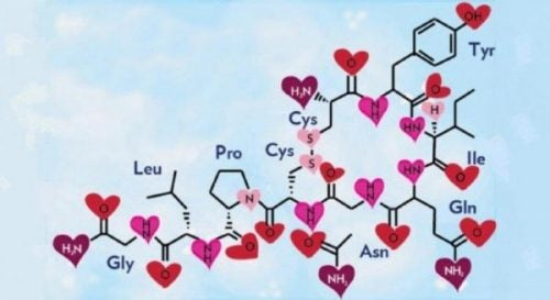 De chemische samenstelling van oxytocine