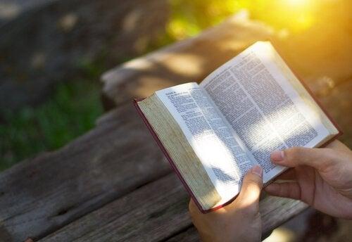 Buiten een boek lezen