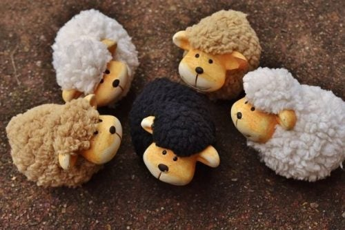 Vijf schaapjes met een zwart schaap
