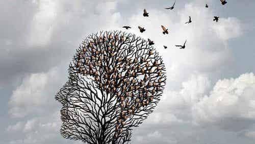 Heuristieken: de sneltoetsen van de geest