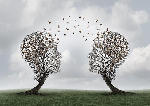 Wat is sociale cognitie precies?