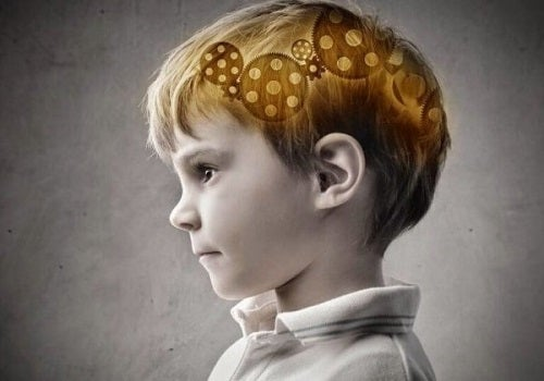 De delen van de prefrontale cortex