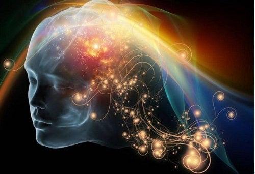 De rol van de bewuste geest